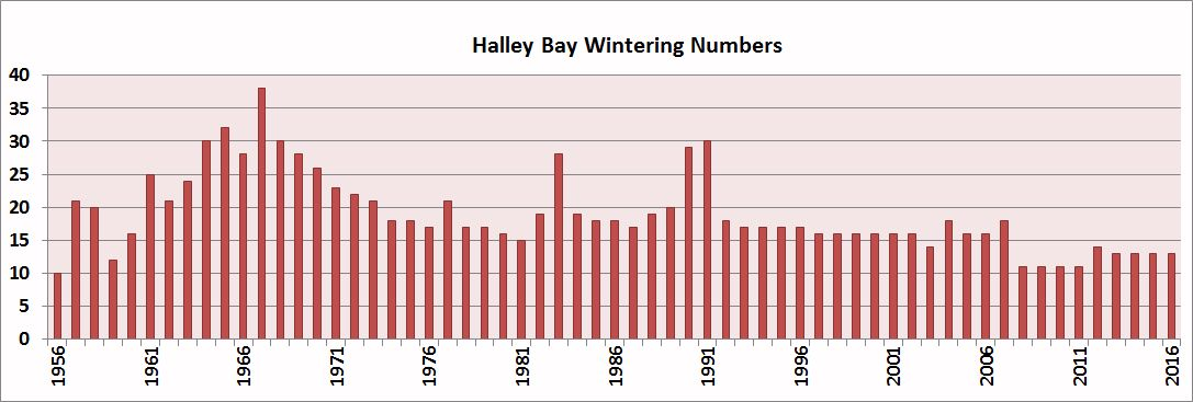 Halley Bay Wintering Complements
